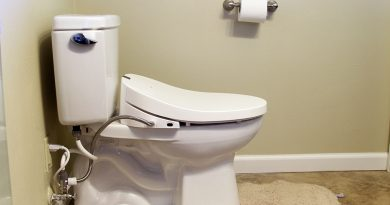 toto washlet c100 elongated seat review