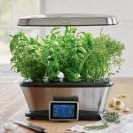 AeroGarden Bounty Wi-Fi with Gourmet Herb Seed Pod Kit Review